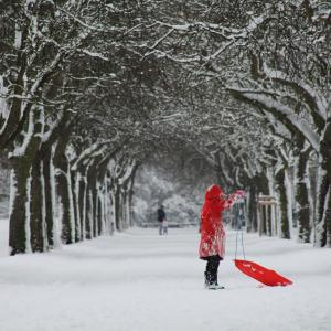 The Girl in Red (Norwich, UK)