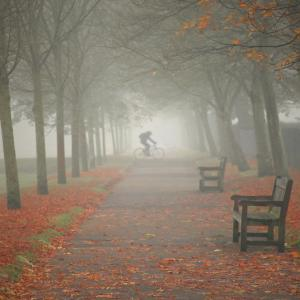 And then came the fog... (Norwich, UK)